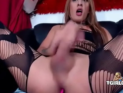 Big smooth dick and balls on a Columbian Tgirl - tgirlcams tube porn vids